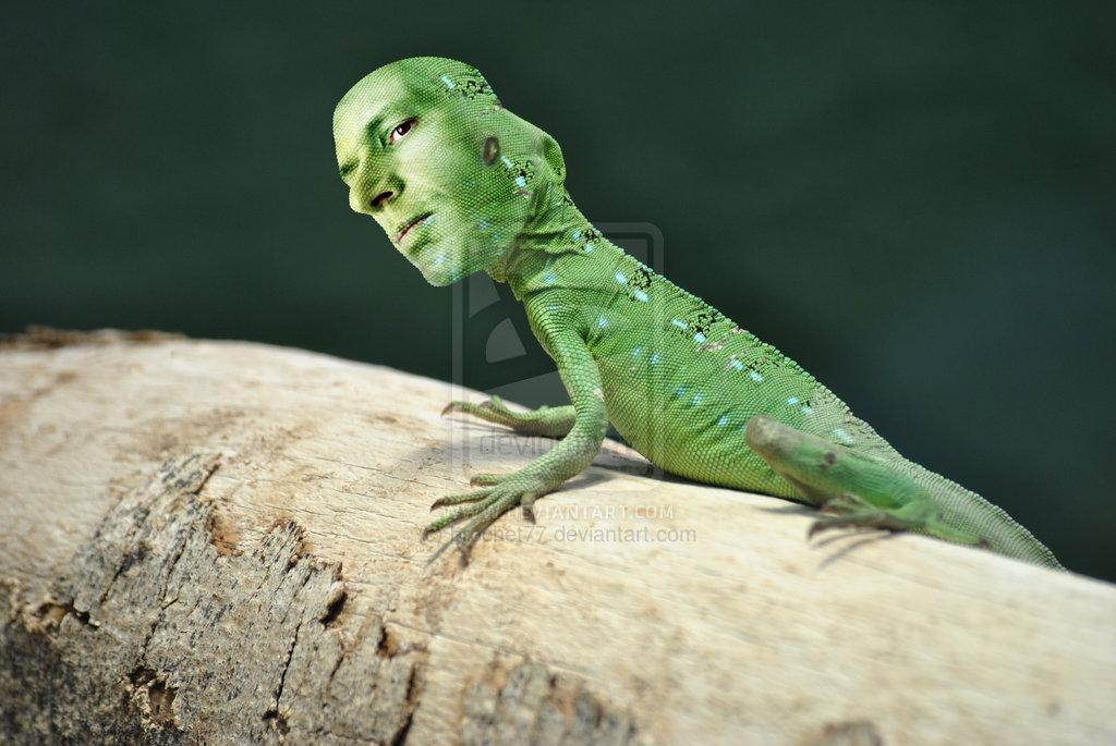 human-lizard