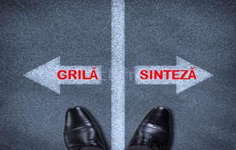 GRILA SINTEZA JPEG