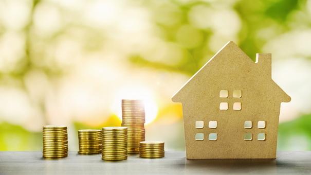 Proiecte de ordin. Chirii si rate achizitie locuinte. Partea I